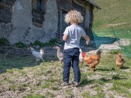 Bub mit Hühner Fotoshooting Zuhause als Homestory